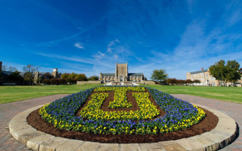 flowers that spell out TU