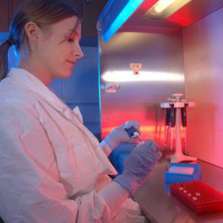 a female student measures a sample under the light of a chemical fume hood